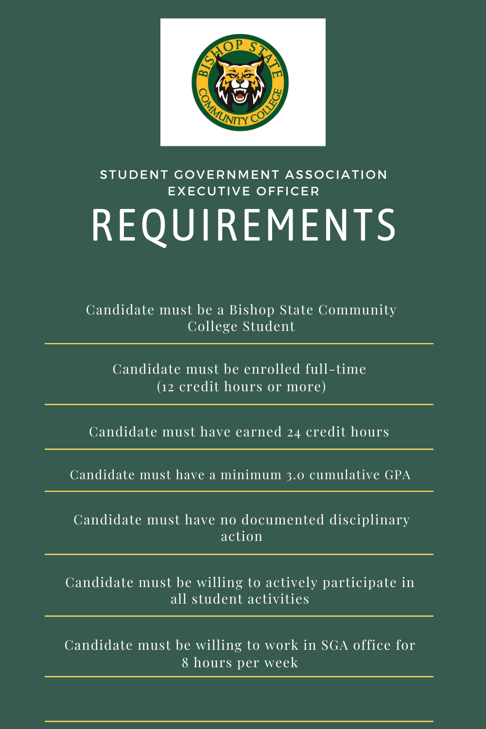 list of SGA Executive Officer Requirements