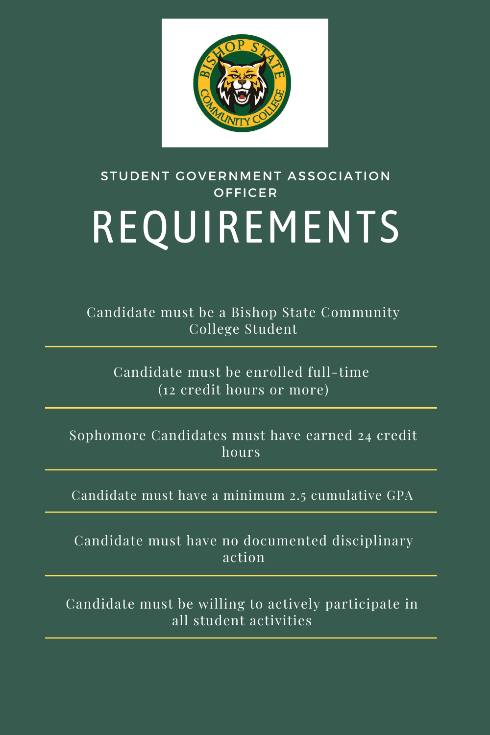 list of SGA Officer Requirements